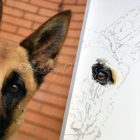 artists work in progress