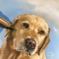 close up photo of labrador painting