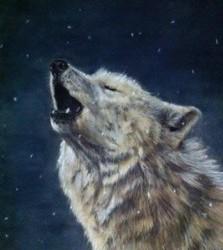 wolf-223x300